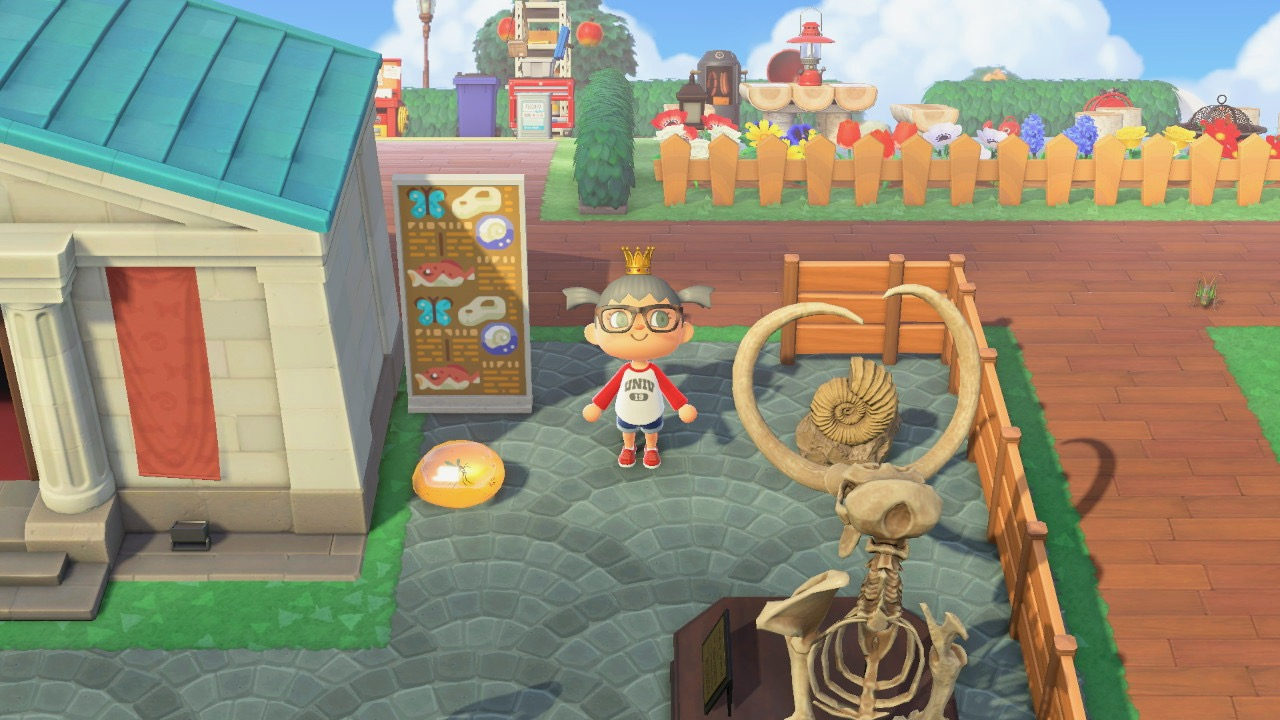 Museum Animal Crossing New Horizon